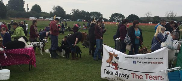 144 dogs queued for the Fun Dog Show