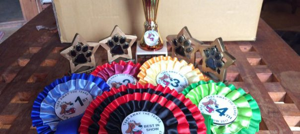 Fun Dog Show Trophies and Rosettes