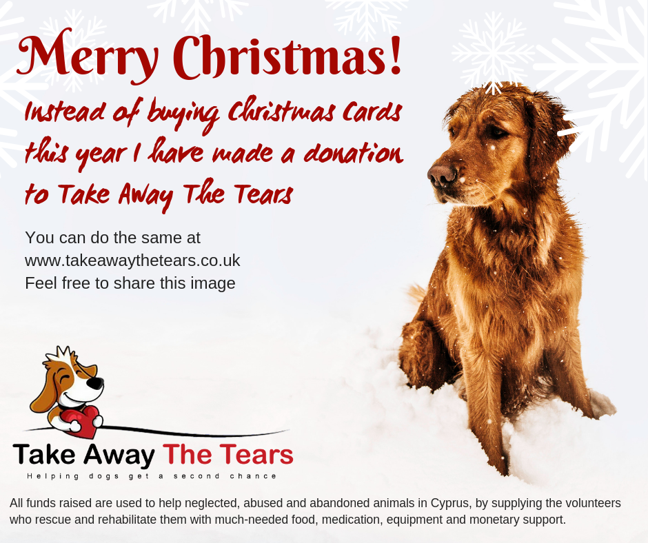 Christmas Card Campaign